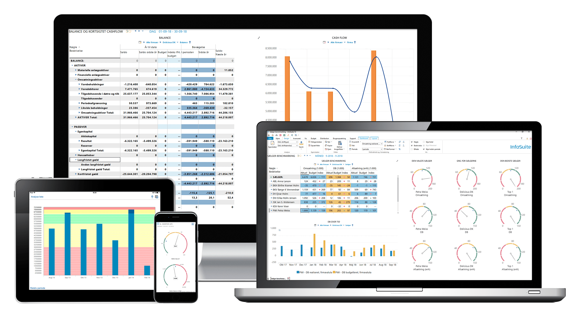 Business Intelligence-software
