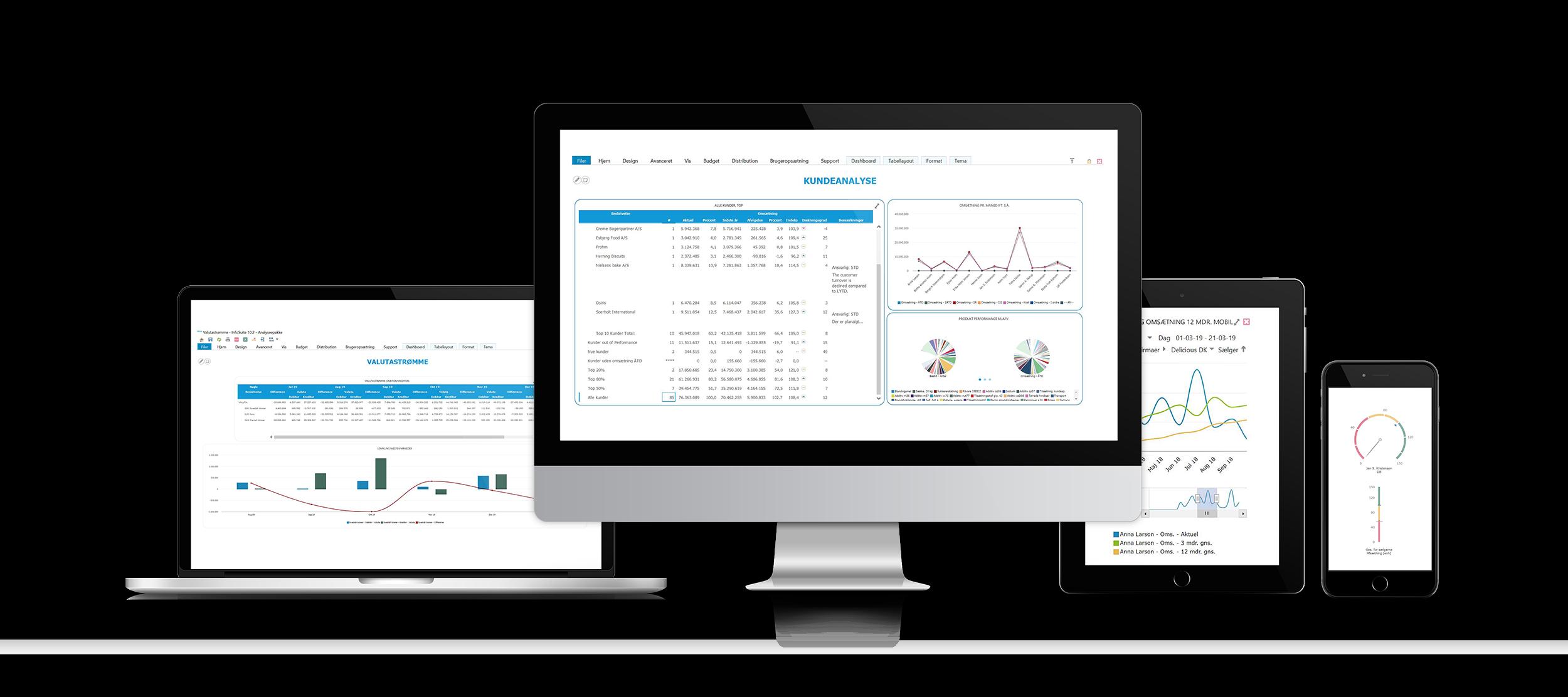 BI-værktøj fra InfoSuite giver dig det fulde billede af virksomheden