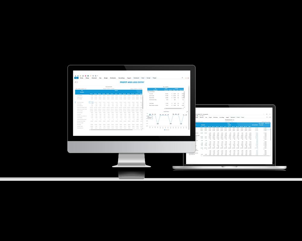 InfoSuite Budget sikrer dig en bedre og mere effektiv budgettering
